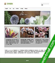 多肉植物网页设计作业成品