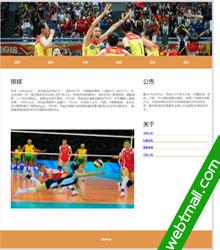 排球运动静态网页设计作业成品